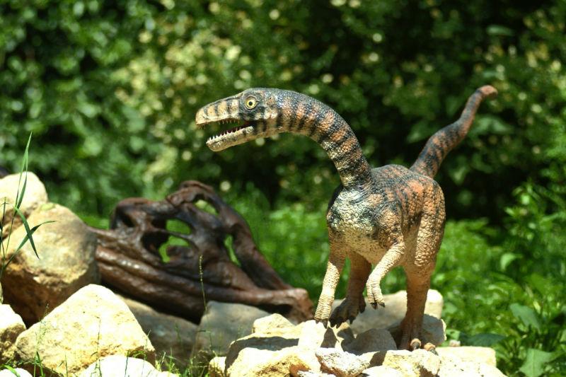 Как выглядел динозавр Компсогнат