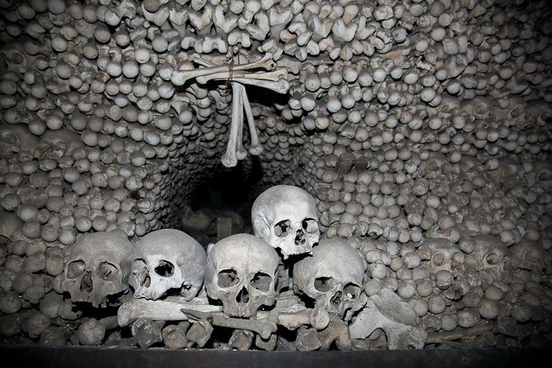 Стена из костей и черепов